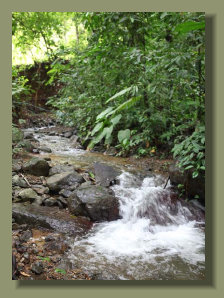 The Pure Fresh Water Creek that runs inside this nice Osa Peninsula Micro Farm  Property