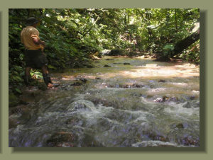 A nice creek runs in the middle of the forest, and offer Pure Fresh Water for human and agricultural use in a Osa peninsula pro