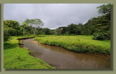 The river that runs between good pasture land of the Farm Forest Land Property in the central Osa Peninsula,