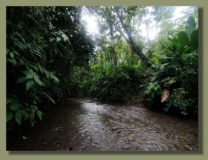 The river that runs inside the Farm Forest Land Property in the central Osa Peninsula, make this one of the best Real Estate