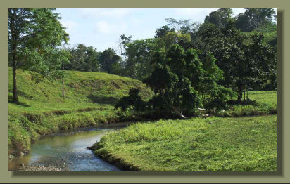 the river that runs in the Pasture Land of this Osa Peninsula Farm Real Estate in the south Costa Rica