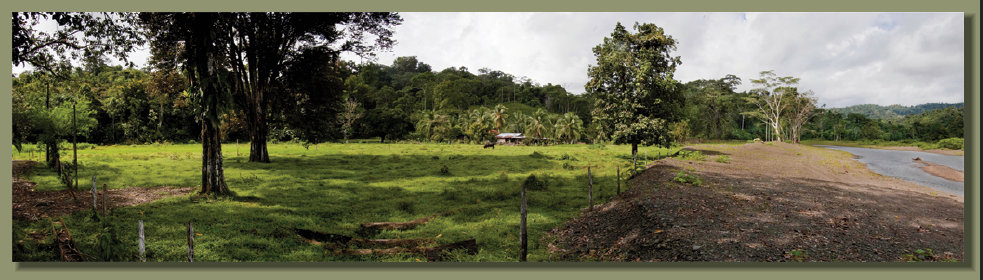 A beatutiful Riverside Farm Forest Land with good fresh water springs in the Osa Peninsula Real Estate area