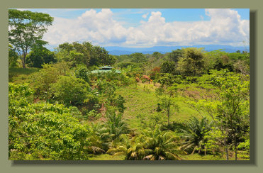 The Beautiful House in a 5 Hectares Farmland Property in the central Osa Peninsula South Costa Rica
