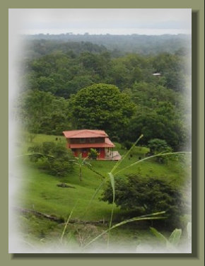 view of the House from an elevated point of the farm Land of this Osa Peninsula Property
