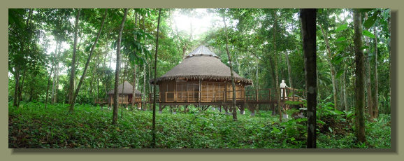 Eco villa built in a Forest Riverside Lot in the Osa Peninsula